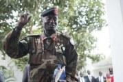 LIMOGEAGE DU CHEF D'ETAT-MOJOR GENERAL DES ARMEES EN GAMBIE :  La «déjamméhisation» se poursuit