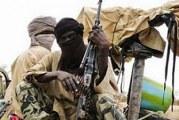 NOUVELLE ATTAQUE TERRORISTE AU NIGER : Un pied de nez aux dirigeants du G5 Sahel