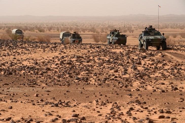 La ministre française des armées en visite dans trois pays — Sahel