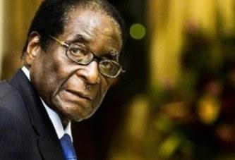 DEMISSION DE MUGABE : Dur à cuire mais cuit quand même