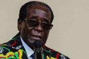 DEPART DE MUGABE : Une bataille de gagnée mais pas la guerre