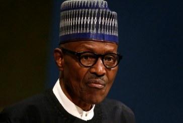 SOMMET DE KIGALI SUR LE LIBRE-ECHANGE EN AFRIQUE : Quand Buhari met les pieds dans le plat