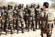 LUTTE CONTRE LE TERRORISME AU SAHEL  2 000 militaires prennent part à l'exercice Flintlock 2019