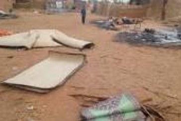 MASSACRE DE PEULHS AU MALI :   Aller au-delà des trémolos et sanglots crocodiliens